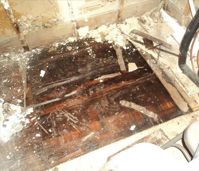 Mold Remediation Follow These Tips If You Suspect Mold
