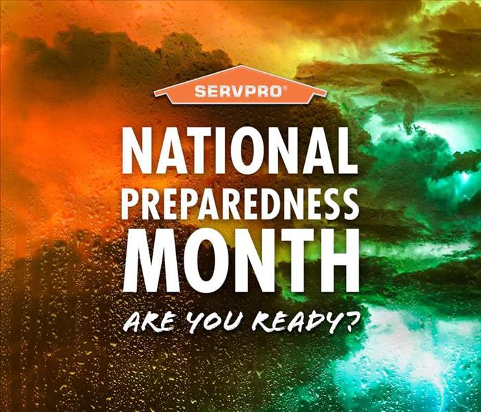 A horizon with lightening striking and lighting up the sky in orange and green colors, along with a SERVPRO house logo