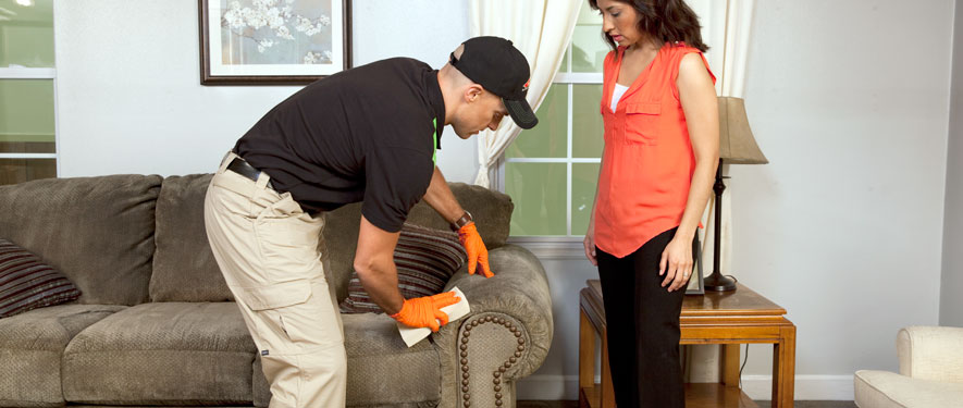 Madisonville, KY carpet upholstery cleaning